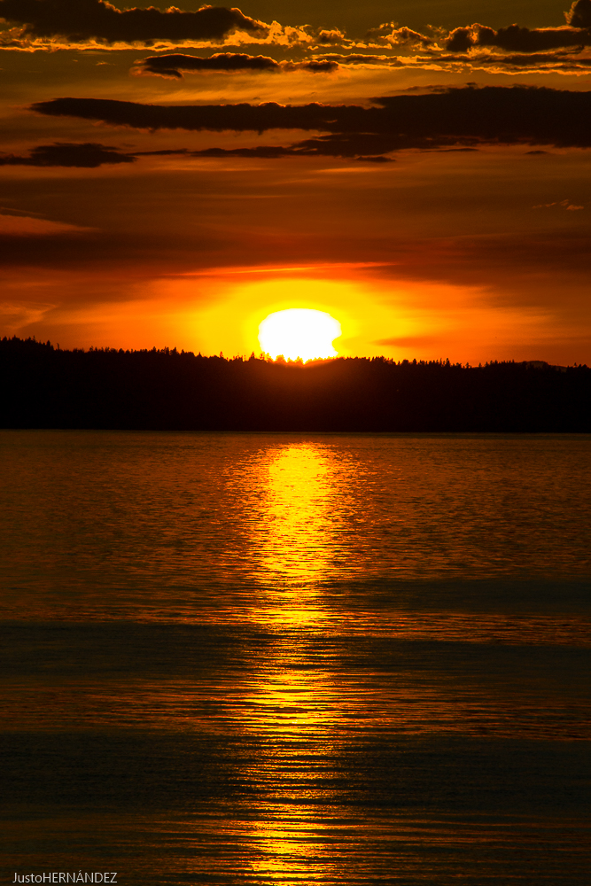 Sunset Carkeek Park